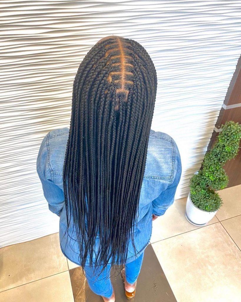 Braiding Hairstyles 2020 for ladies: Top 10 best Hairstyles